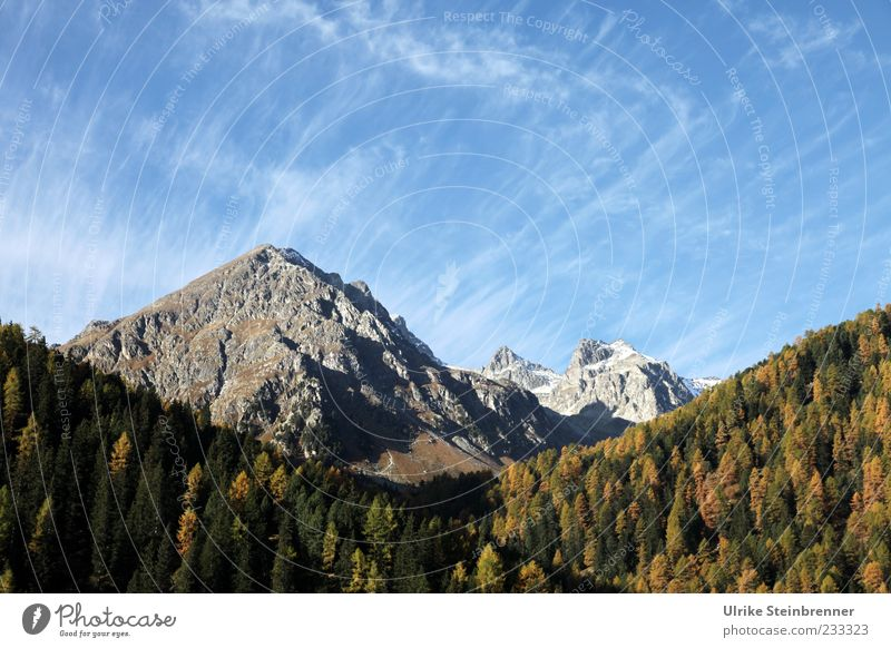 Sky Nature Beautiful Tree Vacation & Travel Plant Clouds Calm Forest Relaxation Autumn Landscape Mountain Freedom Rock Tall