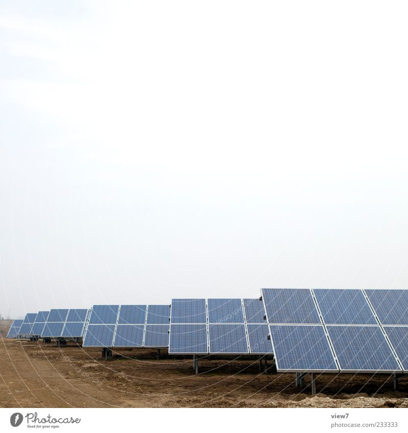 thousand.one hundred Energy industry Renewable energy Solar Power Line Authentic Simple Esthetic Complex Growth Change Future Solar cell Exterior shot Close-up