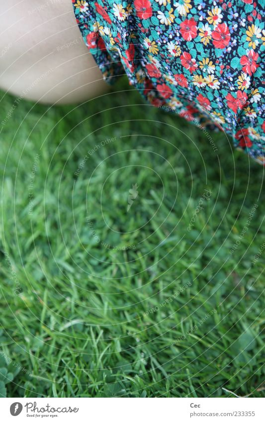 Olgi's Flowers Feminine Legs Calf Nature Spring Summer Grass Meadow Pants Green Kitsch Multicoloured Flowery pattern Blade of grass Sit Detail Partially visible