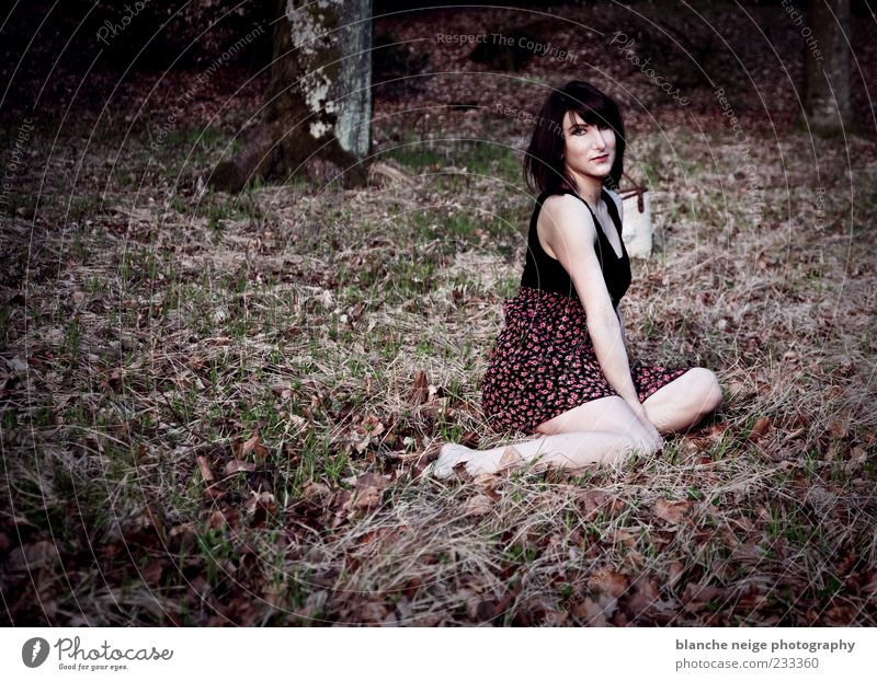 fresh feelings Human being Nature Youth (Young adults) Tree Adults Loneliness Forest Relaxation Feminine Grass Dream Sit Dress 18 - 30 years Serene Brunette