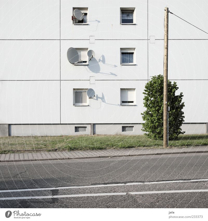 full to bursting Plant Bushes Meadow House (Residential Structure) Manmade structures Building Architecture Apartment house Facade Window Satellite dish