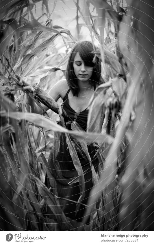 Human being Woman Nature Youth (Young adults) Adults Feminine Emotions Field Going Natural Search 18 - 30 years Young woman Touch Black & white photo