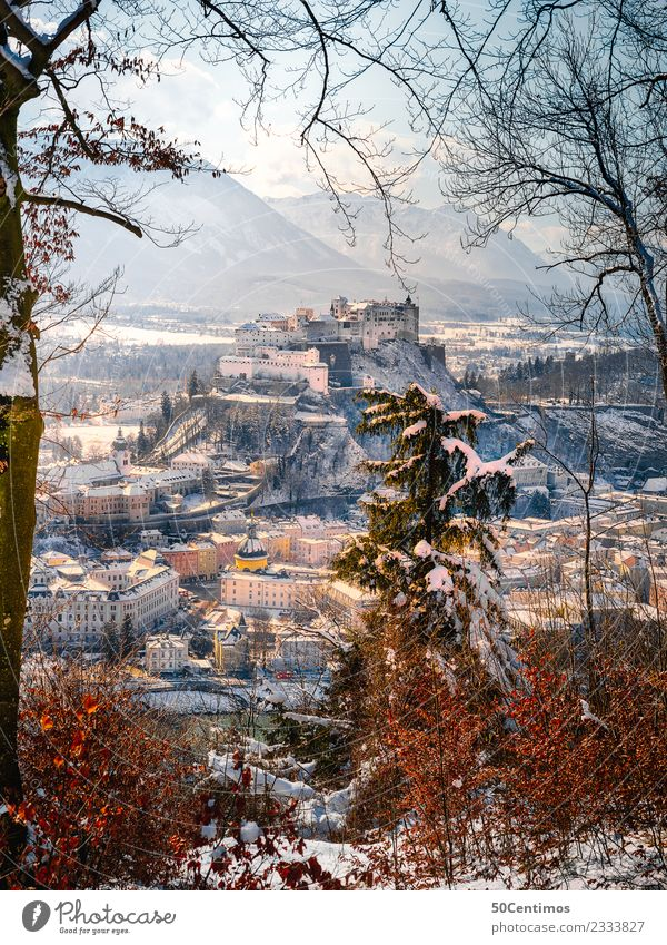 Vacation & Travel Town Landscape Calm Winter Forest Mountain Snow Tourism Trip Hiking Ice Church Adventure Beautiful weather Alps