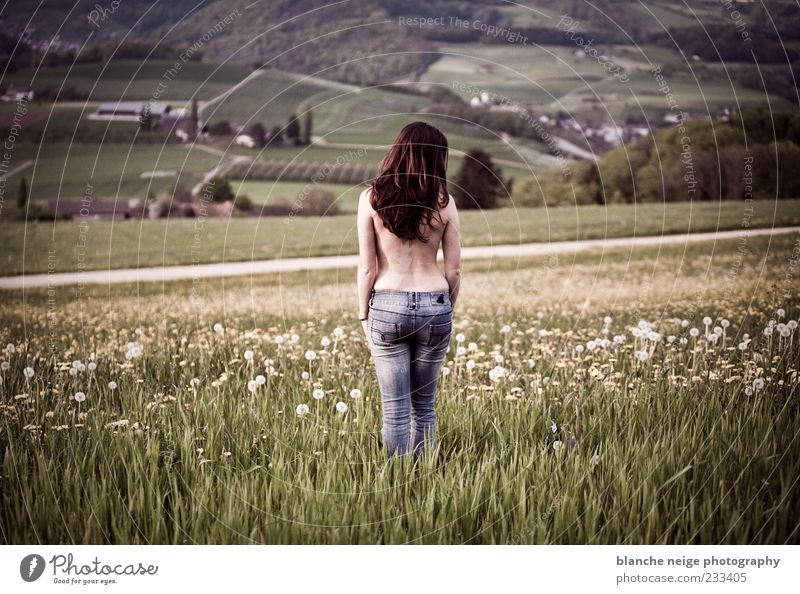 Human being Woman Nature Youth (Young adults) Beautiful Adults Far-off places Meadow Feminine Moody Field Back Wait Free 18 - 30 years Jeans