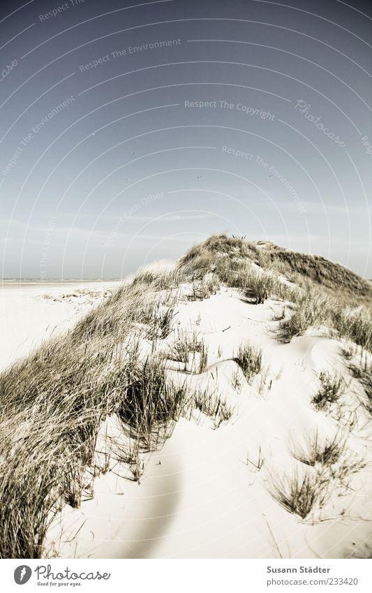 Spiekeroog time for rest Landscape Cloudless sky Sunlight Beautiful weather North Sea Ocean Island Desert Dune Beach dune Marram grass Relaxation Exterior shot