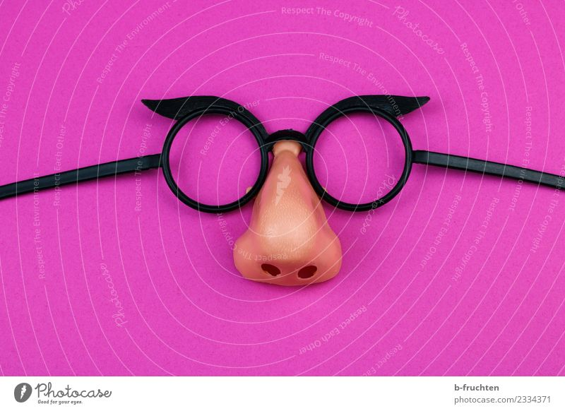 carnival spectacles Feasts & Celebrations Carnival Nose Mask Eyeglasses Observe Communicate Crazy Pink Joy Irritation Change Carneval glasses Hide Anonymous