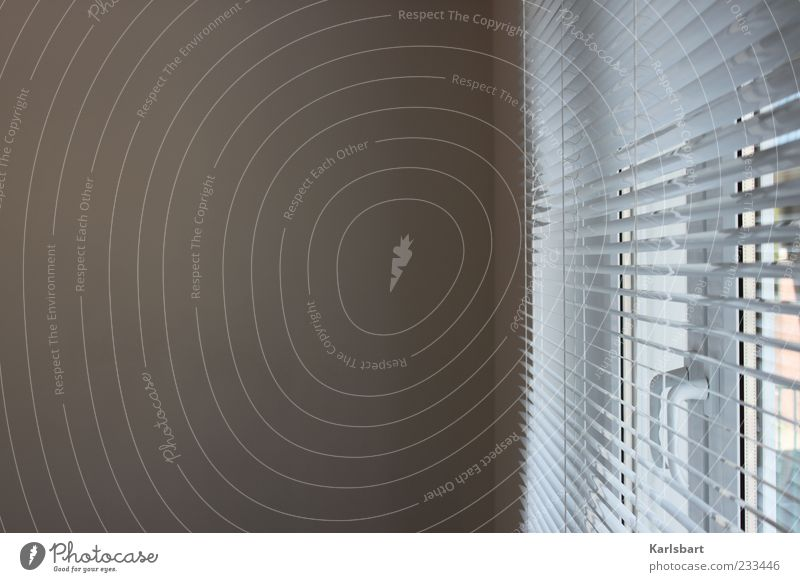 at. window. Wall (barrier) Wall (building) Window Bright Reliability Loneliness Modern Venetian blinds Building Office window Calm Colour photo Interior shot