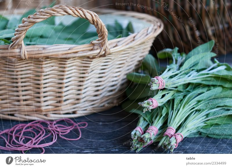 Nature Plant Healthy Eating Green Relaxation Leaf Life Lifestyle Food Living or residing Nutrition Fresh To enjoy Herbs and spices Kitchen