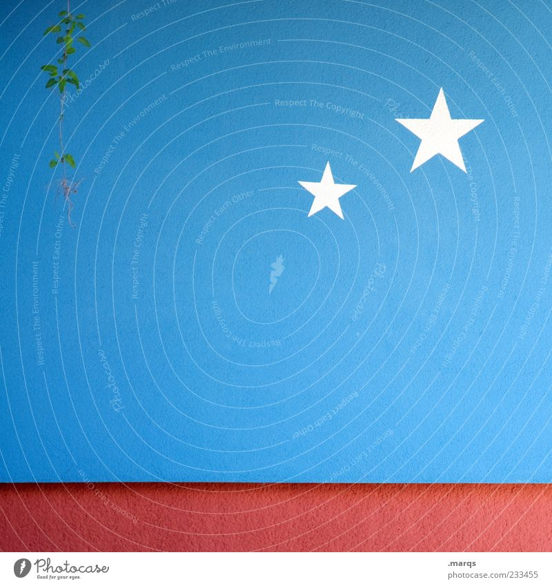 Starlit Plant Wall (barrier) Wall (building) Sign Graffiti Star (Symbol) Simple Blue Red White Colour Colour photo Exterior shot Structures and shapes Deserted