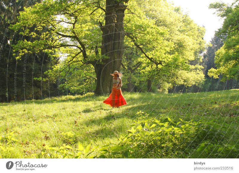 walking pleasures Elegant Joy Feminine Young woman Youth (Young adults) 1 Human being Nature Spring Summer Beautiful weather Tree Park Meadow Skirt Hat Going