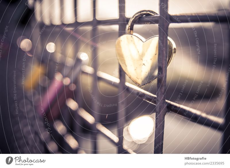lock of love Sign Signs and labeling Wedding Emotions Moody Joy Happiness Contentment Joie de vivre (Vitality) Optimism Passion Sympathy Friendship Together