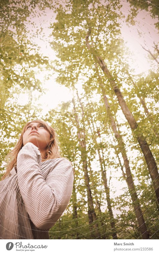 Human being Woman Nature Beautiful Tree Summer Leaf Adults Forest Emotions Spring Blonde Tree trunk Twigs and branches