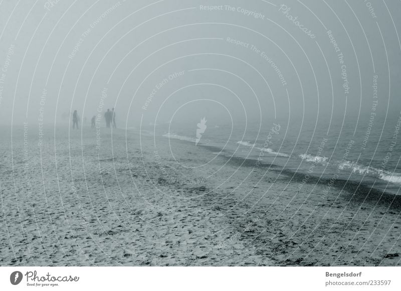 fog creatures Human being 4 Bad weather Wind Gale Fog Rain Thunder and lightning Waves Coast Beach Baltic Sea Loneliness Gray Weather Going Unclear