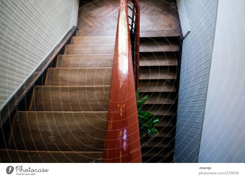From Interior design Stairs Staircase (Hallway) Banister Old building Wood Line Perspective Go up Interior shot Deserted Dark brown Bird's-eye view