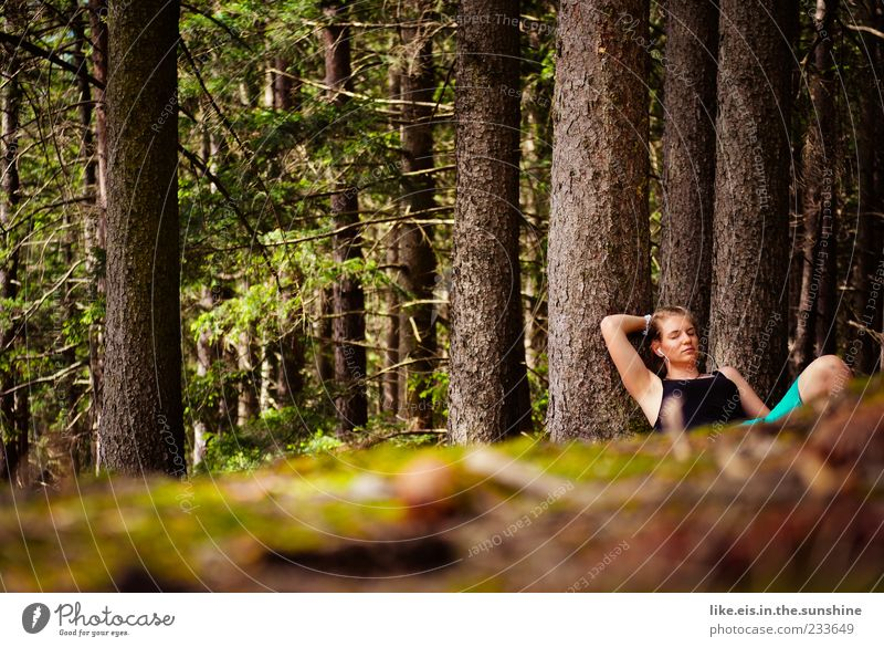 Human being Woman Nature Youth (Young adults) Tree Summer Loneliness Calm Adults Forest Relaxation Environment Feminine Legs Dream Contentment