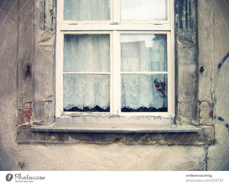 Old House (Residential Structure) Window Wall (building) Gray Wall (barrier) Glass Facade Authentic Decoration Change Transience Derelict Decline Plaster