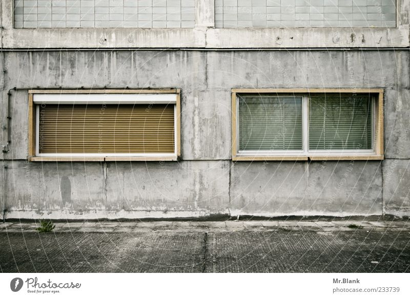 window confusion II Wall (barrier) Wall (building) Facade Old Hideous Brown Gray White Decline Derelict Uninhabited Colour photo Subdued colour Exterior shot
