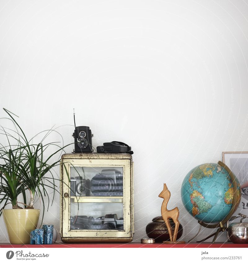 shelf units Flat (apartment) Arrange Decoration Living room Shelves Camera Plant Pot plant Kitsch Odds and ends Souvenir Collection Collector's item Globe