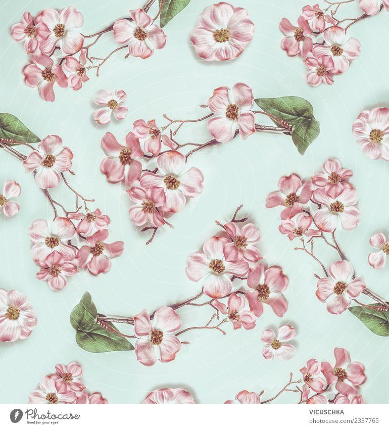 Flower Leaf Blossom Style Pink Design Bright Decoration Bouquet Turquoise Conceptual design Ornament Pastel tone
