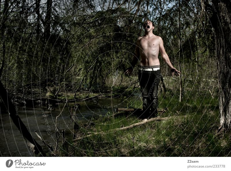 primal cry Lifestyle Masculine 1 Human being Environment Nature Tree Grass Forest Jeans Belt Communicate Scream Stand Aggression Threat Dark Creepy Rebellious