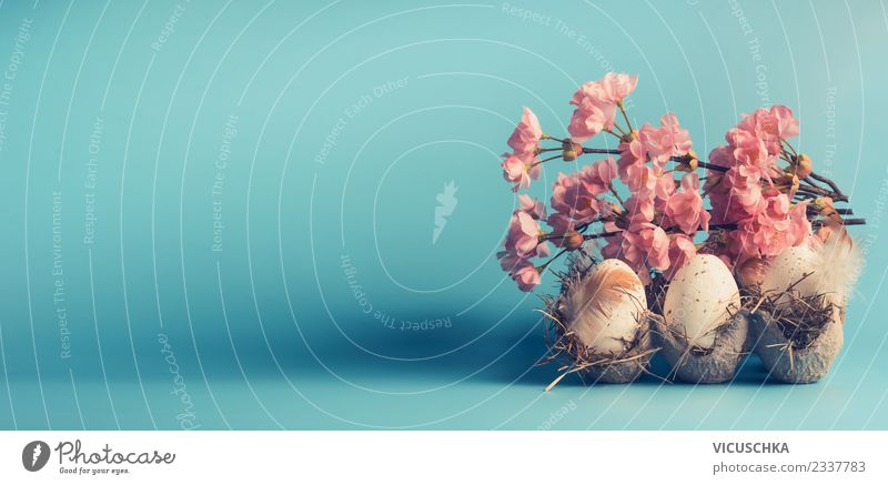 Eggs with spring blossoms Design Decoration Feasts & Celebrations Easter Spring Leaf Blossom Flag Retro Beautiful Pink Style Tradition Background picture