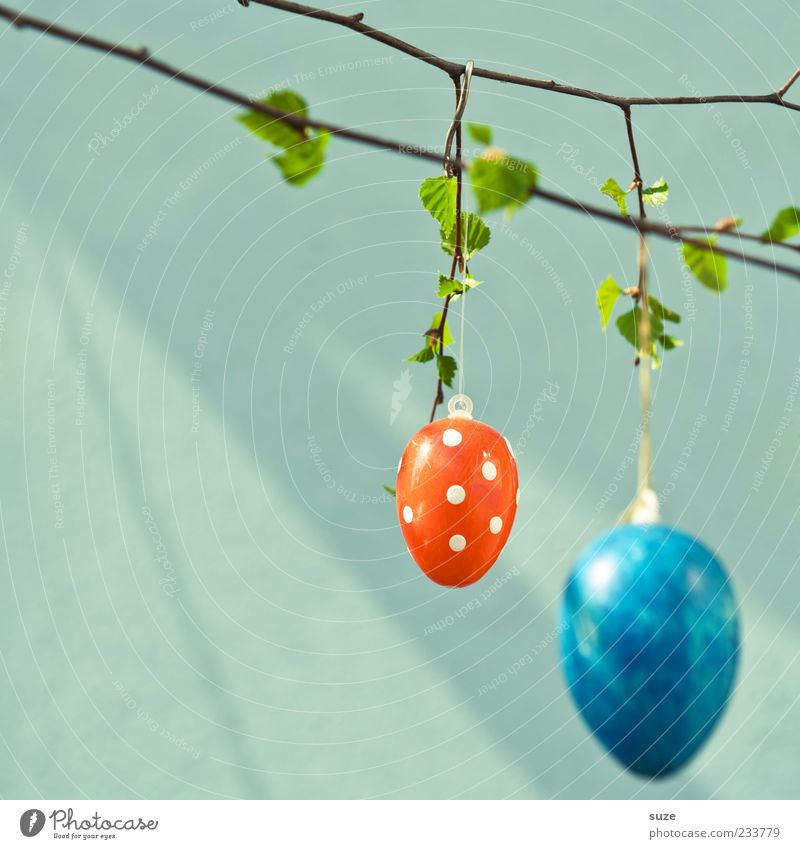 Blue Beautiful Red Colour Leaf Spring Happy Small Authentic Happiness Decoration Cute Simple Round Easter Kitsch