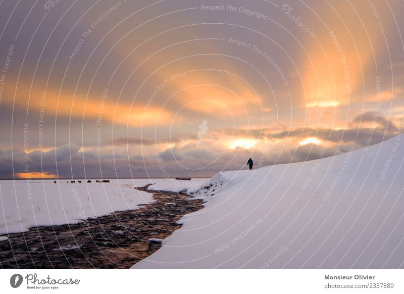Sun breaks through clouds Clouds Sunrise Sunset Sunlight Winter Snow Vacation & Travel Sunbeam Iceland Light Human being Loneliness Colour photo Exterior shot