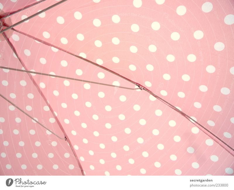 punctual.light.keit. Pink White Esthetic Point Polka dot Sunshade Summer Summery Summer's day Colour photo Multicoloured Close-up Deserted Deep depth of field