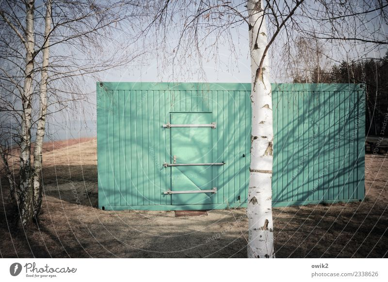 terminal Environment Nature Landscape Plant Cloudless sky Tree Birch tree Forest Wall (barrier) Wall (building) Door Container Tin Wood Metal Sharp-edged Simple