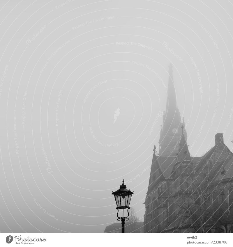 Dresden, Luther Fog Tree Germany Church Manmade structures Building Tourist Attraction Street lighting Lantern Lamp post Old Far-off places Large Historic Tall