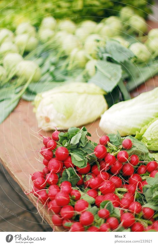 Red Small Food Fresh Nutrition Round Vegetable Delicious Organic produce Markets Vegetarian diet Goods Root vegetable Cabbage Radish Farmer's market