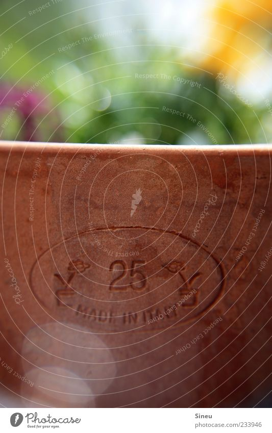 Plant Summer Flower Brown Signs and labeling Round Digits and numbers Beautiful weather Flowerpot Spring fever Pot plant Characters Blur Terracotta