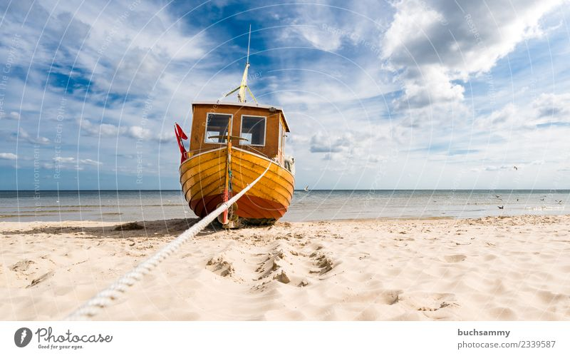 Fishing boat at the Baltic Sea beach Beach Ocean Rope Sand Clouds Watercraft Dream Anticipation Europe Fishery Sky Seagull Sandy beach sunshine Dew Usedom