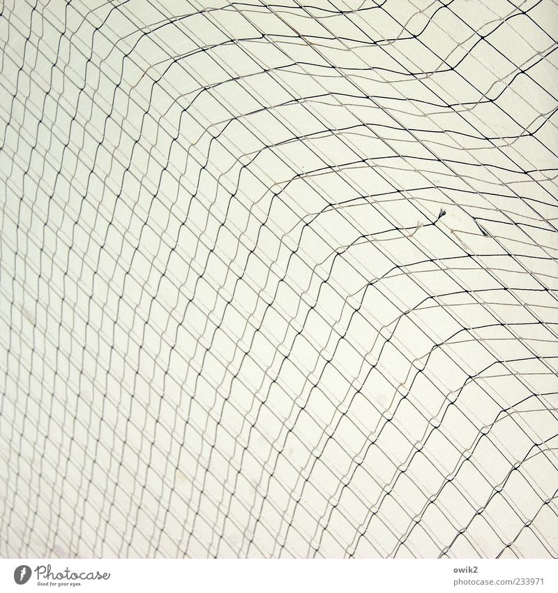 White Black Gray Bright Network Simple Thin Hang Copy Space Flexible Abstract Equal Detail Nylon Black & white photo