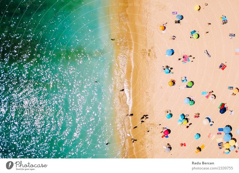 Aerial View Of People Relaxing On Beach In Portugal Vacation & Travel Trip Adventure Summer Summer vacation Sun Sunbathing Ocean Island Waves Swimming & Bathing
