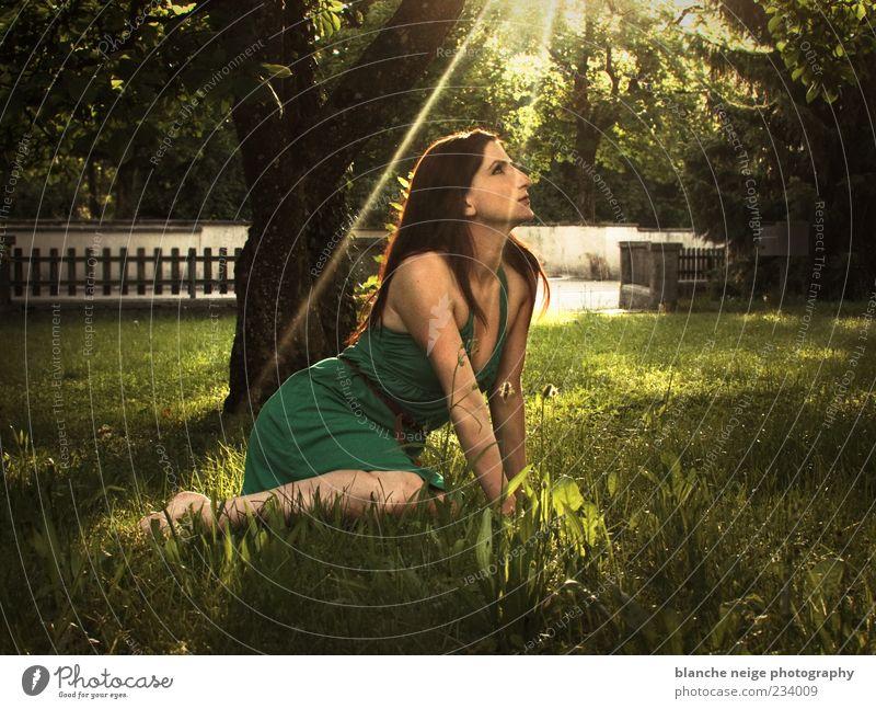 sun sun sun Relaxation Summer Feminine Young woman Youth (Young adults) Woman Adults 1 Human being 18 - 30 years Sun Sunlight Tree Grass Garden Dress Brunette