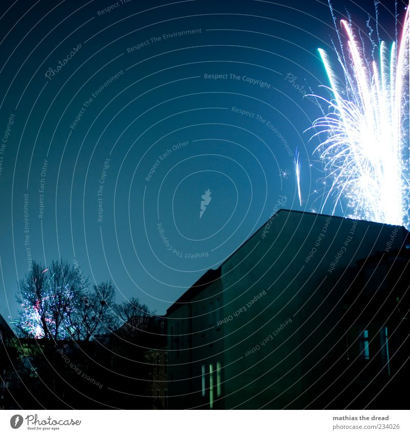 HAPPY NEW Night sky Tree Town House (Residential Structure) Manmade structures Building Facade Window Dark Firecracker New Year's Eve Explosion Multicoloured