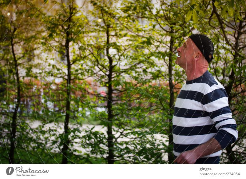 Yeah, am I in the woods here...? Human being Masculine Man Adults 1 45 - 60 years Observe Think Meditative Hedge Bushes Cap Striped Plant Resolve Upward Sweater