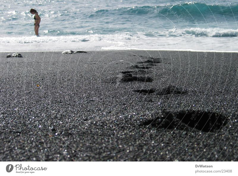 Water Ocean Beach Sand Tracks Swimming & Bathing Footprint