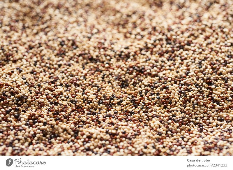 close up of mixed quinoa seeds Green White Red Dish Eating Yellow Healthy Natural Health care Food Brown Moody Bright Nutrition Fresh Climate