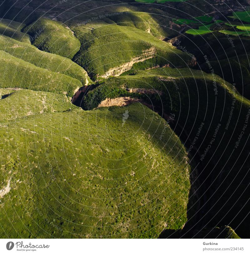 Twisted river Nature Green Beautiful Tree Plant Landscape Environment Earth Natural River Beautiful weather Canyon Bird's-eye view Wild plant