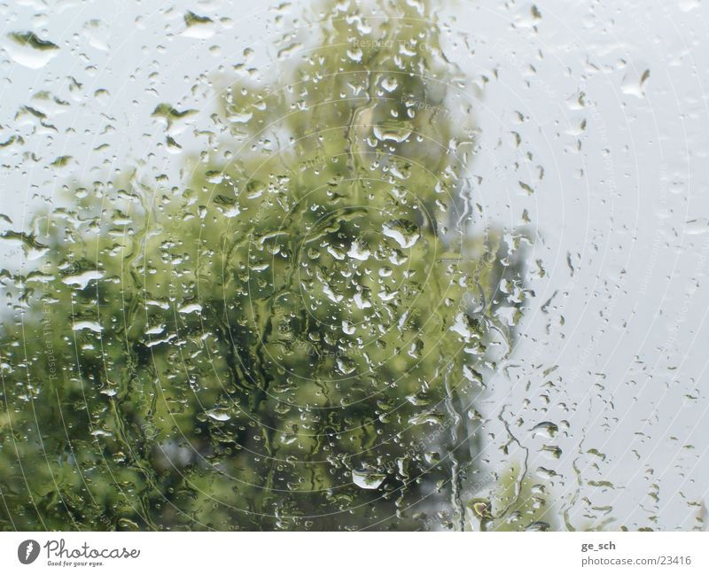 downpour Rain Window pane Wet water Drops of water Vantage point Weather Interior shot