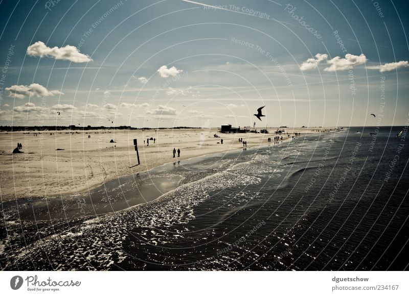 beach day Relaxation Calm Swimming & Bathing Leisure and hobbies Trip Summer Sun Beach Ocean Waves Human being Life Nature Landscape Sand Air Water Clouds
