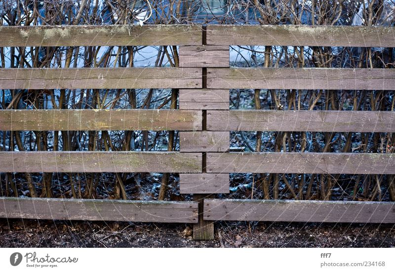 Finnish fence Blue Beautiful Landscape Black Wall (building) Architecture Wall (barrier) Wood Gray Garden Brown Park Living or residing Earth Europe Beautiful weather