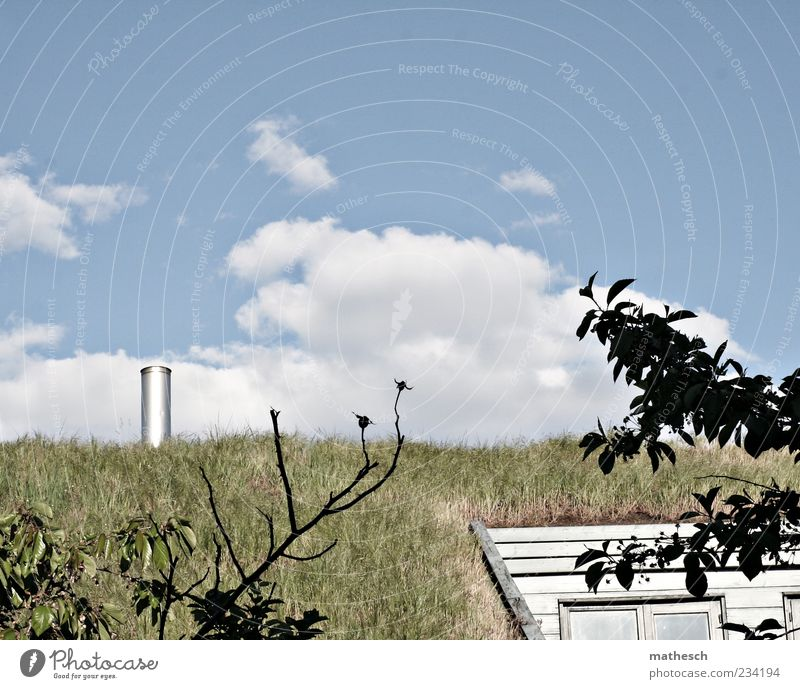 grass roof House (Residential Structure) Nature Air Sky Clouds Grass Building Roof Chimney Blue Green Grass roof Colour photo Exterior shot Deserted