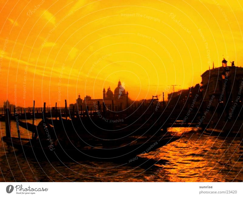 Venice Yellow Light Europe Back-light Sunlight Silhouette Gracht Gondola (Boat) Copy Space top Bright background Orange Twilight