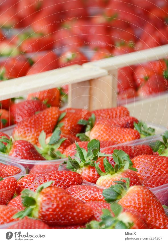 Red Nutrition Food Fruit Fresh Sweet Delicious Mature Organic produce Bowl Strawberry Goods Market stall Berries Farmer's market Fruit- or Vegetable stall