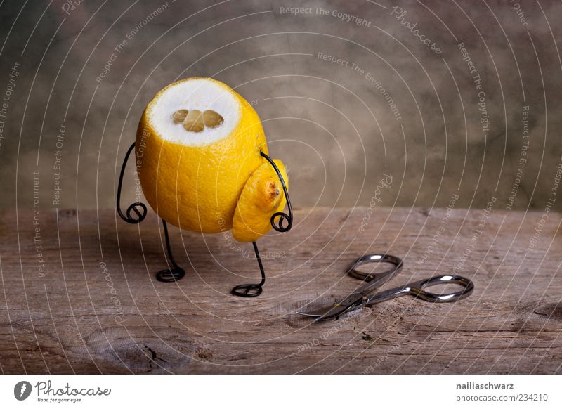 headless Food Fruit Lemon Citrus fruits Nutrition Stand Exceptional Creepy Sour Brown Yellow Emotions Sadness Grief Apocalyptic sentiment Headless Scissors