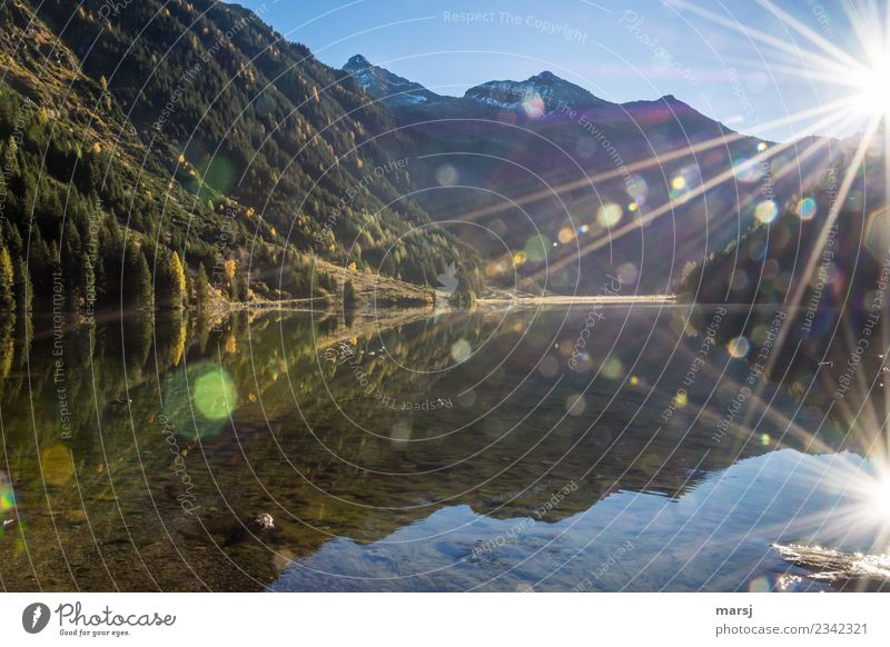Riesachsee in backlight with many lens flares but also two sun stars. With view to the Hochwildstelle. Reflection Glare effect Mountain lake Autumn