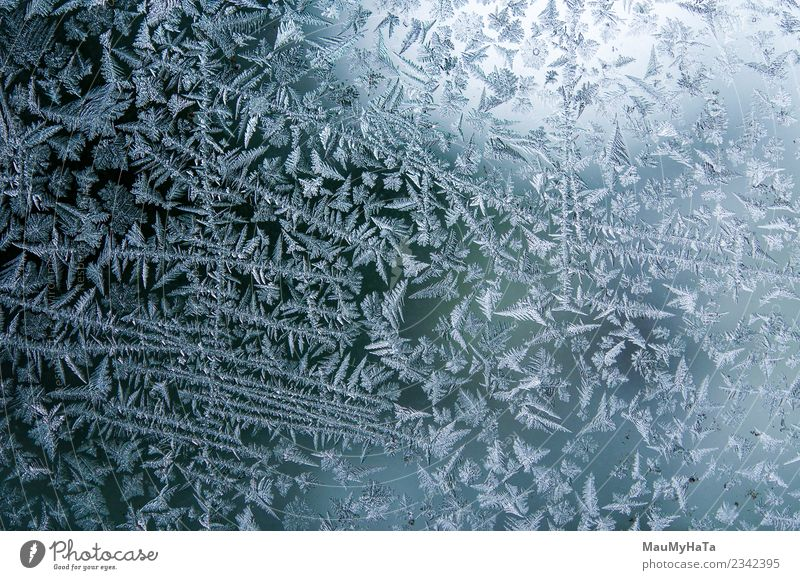 Ice patterns on winter Beautiful Winter Snow Christmas & Advent Nature Climate Weather Fresh Bright Natural New Blue Frost Frozen window glass ice Consistency